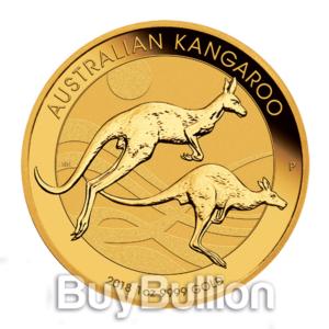 Gold-Kangaroo2018-A