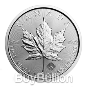 Silver-Maple2018-A